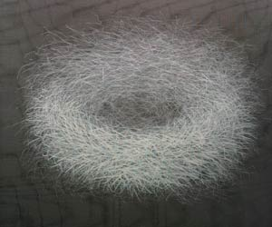 Nest, 100 x 81 cm, 2012, Acrylic on net on canvas