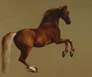 Whistlejacket by the artist George Stubbs