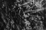 2015_nocturne-x_240x202-cm_mittel